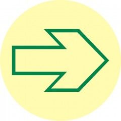Evacuation disc (arrow)
